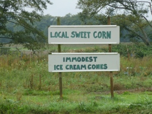 sign-immodest ice-cream cones_small